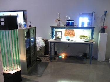 biolab1 1