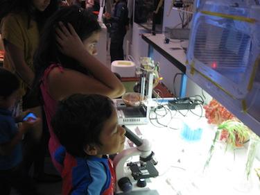 biolab5