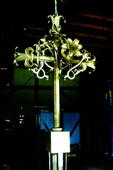 lilycrossbest